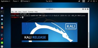 How to Install Kali Linux